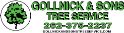 Gollnick & Sons Tree Services